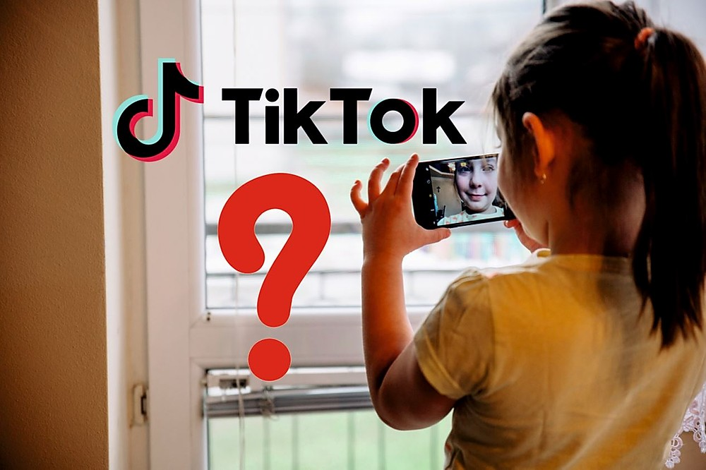 Top Tiktok Influencers In India