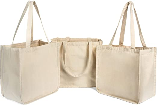 Great Reasons Why Business Should Buy Reusable Grocery Bags In Bulk