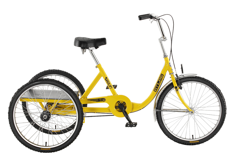 Have Loads of Fun With the Adult Tricycle